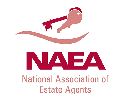 "BTL investors ""stormed the housing market"" says NAEA"